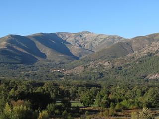 Spain Ibex Hunt & Driven Partridge Hunts 37