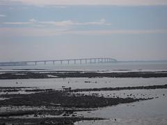 PONT DE L'ILE DE RE (marsupilami92) Tags: france vacances frankreich pont 17 larochelle tourisme île atlantique océan sudouest îlederé charentemaritime poitoucharentes