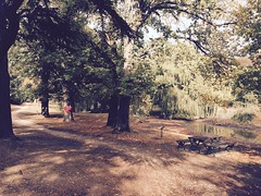 Malmsbury Botanical Gardens