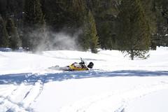 SnowMo IV 2013 017