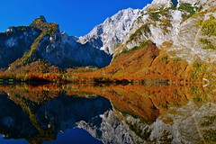 Autumn glory at the Königssee lake (echumachenco) Tags: morning november blue autumn trees red sky lake mountains alps reflection green fall water face yellow rock wall forest germany bayern deutschland bavaria autumncolors ridge limestone königssee watzmann stbartholomä berchtesgadenerland nationalparkberchtesgaden berchtesgadeneralpen watzmannostwand hachelwand