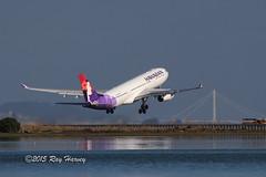 HA.A332.N373HA.2015-10-06.KSFO-A330-243.l (320-ROC) Tags: sanfrancisco sfo airbus hawaiian a330 sanfranciscointernationalairport ksfo sanfranciscoairport a330200 airbusa330 hawaiianairlines hawaiianair a332 airbusa330200 a330243 airbusa330243 n373ha