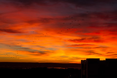 Sunset view from my window (fabamars13) Tags: sunset window soleil paysage soir