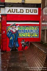 The Auld Dubliner Pub. Dublin, Ireland