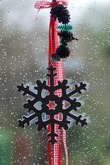 Schneeflocke im Regen
