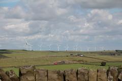 ROYD MOOR  INGBIRCHWORTH (Barrytaxi) Tags: wind farm