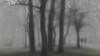 A walk in the park (* mariozysk *) Tags: park people trees mist fog mgła drzewa ludzie mariozysk pentax k5