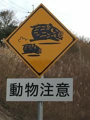 IMG_0790 wild boars crossing (Explored 5th Jan 2017) (drayy) Tags: cute funny japan saga sign signs animals wildboar crossing 日本 佐賀 佐賀県 標識 えのしし 動物 注意 動物注意 道路 道 有料道路 厳木 多久 adorable explore