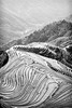 Terrace (GavinZ) Tags: black white bw monochrome landscape rice terrace paddies farm longji guilin china asia travel 中国 广西