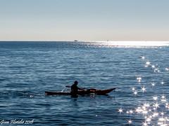 Remando tra le stelle (Gian Floridia) Tags: ligure liguria tigullio backlight controluce horizon kayak luccichio mare onde orizzonte remare riflessi row sea silhouette stars stelle