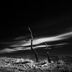 """""""One life, one chance, all ephemeral, ephemeral"""" (""""...and not to yield!"""") Tags: catalonia odena blackandwhite monochrome fuji clouds tree cross wclx100 infrared hoya r72"""