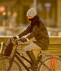 Copenhagen Bikehaven by Mellbin - Bike Cycle Bicycle - 2017 - 0023 (Franz-Michael S. Mellbin) Tags: accessorize bici bicicleta bicicletta biciclettes bicycle bike bikehaven biking copenhagen copenhagenbikehaven copenhagencyclechic copenhagencycleculture copenhagenize cycle cyclechic cycleculture cyclist cykel cyklisme denmark fahrrad fashion fiets people rower street sykkel velo velofashion vélo