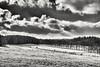 Winterland monochrom (Helmut Reichelt) Tags: bw sw winterland hell dunkel wolken schnee felder januar winter schwaigwall geretsried bayern bavaria deutschland germany leica leicam typ240 captureone10 silverefexpro2 leicasummilux50mmf14asph