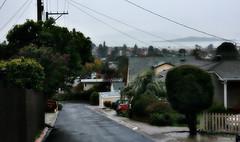 Suburban alley (TJ Gehling) Tags: alley street waldolane elcerrito sanfranciscobay brooksisland clouds rain fog