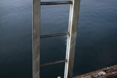 Calm harbor (mokuu) Tags: calmsea sea 海 harbor 港