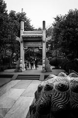 Come in (Go-tea 郭天) Tags: street urban city outside outdoor people bw bnw black white blackwhite blackandwhite monochrome asia asian china chinese shandong canon eos 100d 24mm prime jinan baotu springs man yoman young couple cold winter gate door old ancien traditional tradition history historical historic design dragon guard cross crossing crossed through in out guest welcome trees rocks bag coats together middle path jinanshi shandongsheng chine cn