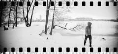 2017-01 - 080SR - DSC_1715 (sarajoelsson) Tags: sprocketrocket blackandwhite bw panorama panoramic sprocketholes digitizedwithdslr toycamera ilford 135 35mm hp5 monochrome plasticlens everydaylife filmphotography filmisnotdead believeinfilm filmshooter film wideangle lomography lomo city urban xtol teamframkallning bnw svartvitt blackwhite stockholm sweden ordinarylife solna winter january 2017 snow winterwonderland rime