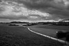 """tussen Vossem en Duisburg"" (B.Graulus) Tags: photography landscape monochrome tervuren flanders vlaamsbrabant belgium belgië belgique belgica blackandwhite bw street clouds road field canon hdr"