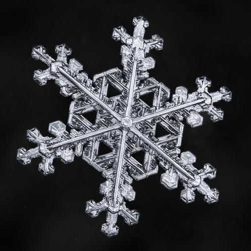 Snowflake-a-Day #61