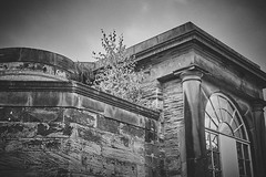 The Greenhouse (3) (Hey hey JBA) Tags: blackandwhite bw monochrome blackwhite nikon arch yorkshire sigma greenhouse ysp c1 yorkshiresculpturepark yorkshirestone 1750mm d7200