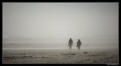 """Fog Beach • <a style=""""font-size:0.8em;"""" href=""""http://www.flickr.com/photos/19658346@N02/21620658311/"""" target=""""_blank"""">View on Flickr</a>"""