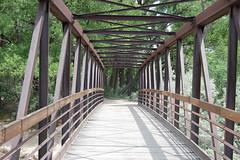 Bridge over Animas River - Summer - 2009 (mademoisellelapiquante) Tags: bridge newmexico southwest architecture unitedstates southwestus animasriver