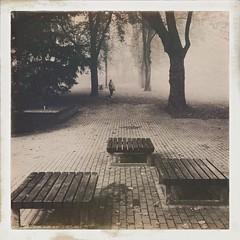 Walk the Fog (Thdenz) Tags: