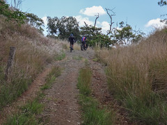 The Last Climb (Neil Ennis) Tags: cycling mtb bnt kilkivan bicentennialnationaltrail