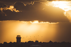Salamandre Mostaganem, Algeria (oussama_infinity) Tags: world camera sunset panorama canon photography eos algeria photo long exposure shot image background infinity capital silhouettes exposition national photograph usm ef geographic  algrie  alger longue    650d oussama at   d650   canon650d canond650