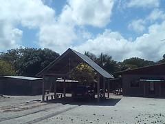 Tambours mis à sécher au garage, décembre 2015, près d'Awala-Yalimapo