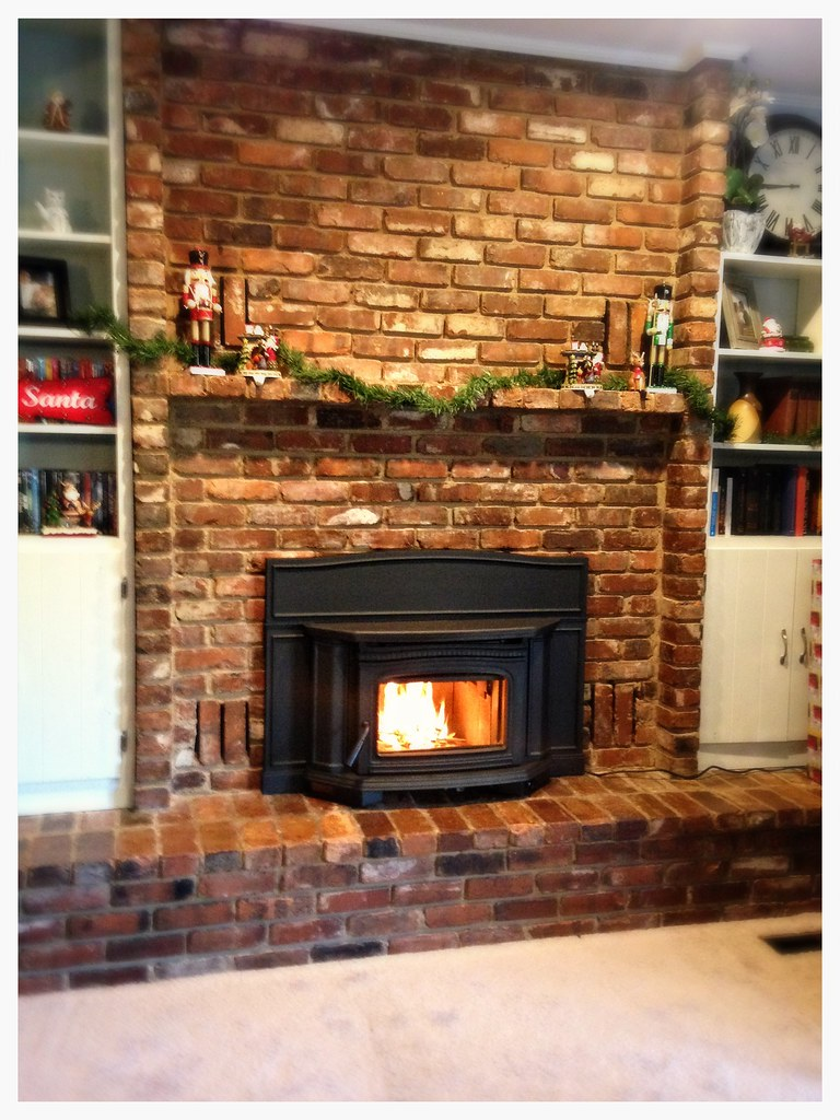 Pacific Energy Alderlea Wood Burning Insert. CLeveland, Tn.