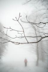 sunday-3109 (FarFlungTravels) Tags: winter ski skiing laurelhighlands pennsylvania reservoir morning sunrise foggy snow squall