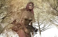 .Pilgrimage of the Nestless Bird… (¸¸::^ˇ^Dearra^ˇ^::[little virtual keyhole]☂) Tags: wintersolstice wintersolsticeinmysticrealms palegirlproduction on9 moonamore disorderly swallow zibska tiffanydesign naminoke lagyo catwa maitreya collabor88 shinyshabby secondlife fantasy fantasyfeeds amarabeauty arte nox tannenbaum dearrasilbersztein littlevirtualkeyhole 3ddesign deetalez kokolores slfree freebies eventide candynail aisha evolove