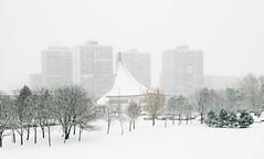 Jan 14: Dubravka Center under Snow (johan.pipet) Tags: flickr zima winter january cold snow sneh chilli freeze white city suburb bratislava dubravka dúbravka church condo park catholic chistian koprivnica slovakia slovensko eu europe palo bartos bartoš canon