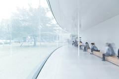 Kanazawa - 21st Century Museum of Contemporary Art (Mathieu Noel) Tags: kanazawashi ishikawaken japon sejima sanaa kanazawa museum