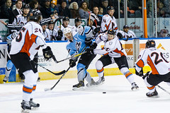 "Missouri Mavericks vs. Alaska Aces, December 17, 2016, Silverstein Eye Centers Arena, Independence, Missouri.  Photo: John Howe / Howe Creative Photography • <a style=""font-size:0.8em;"" href=""http://www.flickr.com/photos/134016632@N02/31639577051/"" target=""_blank"">View on Flickr</a>"