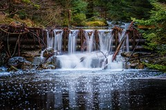 Djupadalen, Norway (Vest der ute) Tags: norway rogaland haugesund xt2 river water waterscape reflections forest trees rocks fav25 fav200