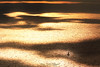 Lost (virginie kriegel) Tags: europe france bouchedurhone provencealpescotedazur marseille cassis exploration explore sun sunset sea water colors bateau boat travel light canonphotography canoneos canon manfrotto