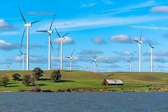Alternate Energy (1 of 3): Wind (ben_leash) Tags: blue windmills windmill windfarm alternativeenergy barn farm farmland cows cattle california bayarea sacramentoriver sacramentodelta eastbay country countryside landscape nikon 70200mmf4