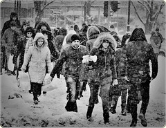 Hard winter in Bucharest (Ioan BACIVAROV Photography) Tags: people woman women man men snow snowstorm white neige zapada amazing minunat landscape road romania hiver hard hardwinter iarna iarnagrea photojournalism bacivarov ioanbacivarov bacivarovphotostream interesting beautiful wonderful wonderfulphoto nikon