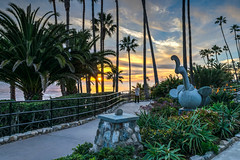 Sunset Path (tquist24) Tags: california catalinaisland hdr heislerpark lagunabeach nikon nikond5300 pacificocean people santacatalinaisland beach birdofparadise clouds evening fence flowers garden geotagged ocean palmtree palmtrees park path reflection reflections sculpture shoreline sky sunset tree trees water unitedstates