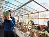 (LaSandra.) Tags: girl sandralazzarini light sun greenhouse faceless undercover cat cactus plants