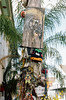 74050029 (alexdotbarber) Tags: 1125 35mm carlzeissplanart50mmf14 contaxaria kodakportra160 louisiana neworleans slr colornegative f56 livethedream streetart
