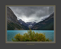 Lake Louise and cinquefoil (virgil martin) Tags: mountains clouds lake cinquefoil landscape lakelouise alberta canada panasoniclumixfz1000 gimp