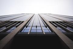 Finance Tower (Eero Capita) Tags: finance tower tour finances bruxelles brussels brussel nikon d7100 dx 1020 sigma architecture symétrie symettry