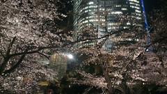 IMAG1636 (mikaos/米高) Tags: 日本東京 htconex