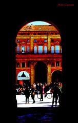 Cuore della città (michelecipriotti) Tags: bologna emiliaromagna centro iporticidibologna palazzodaccursio comune piazzamaggiore sanpetronio bicicletta persone colori