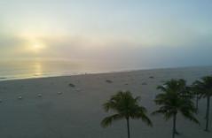 Fort Lauderdale Beach (player_pleasure) Tags: fortlauderdaleflorida mavic drone beach sand ariel palm sunrise