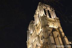 Cathedrale Notre-Dame de Paris (Alessia Cifali Photography) Tags: cathedral notredame notredamedeparis paris france 2017 february nigh nightphotography architecture
