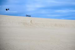 Little Sahara (Suri Singh) Tags: australia kangarooisland southaustralia sand whitesand quest search horizon wideopen sahara desert landscape